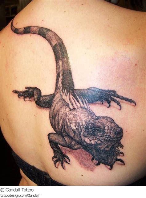 full body lizard tattoo lizard tattoo images designs