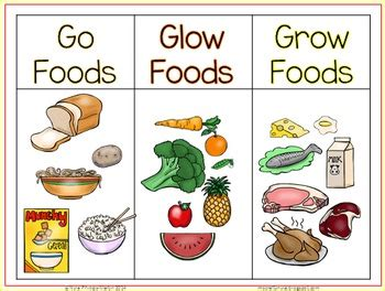 go food go glow and grow foods sorting activity worksheet and posters