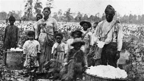 Of The South how slavery became the economic engine of the south