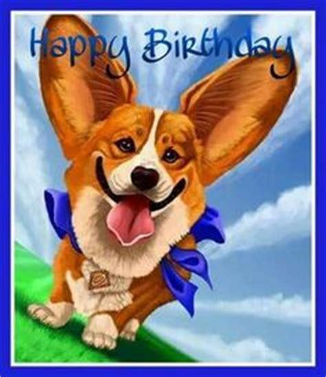 Corgi Birthday Meme - 1000 images about birthday memes on pinterest happy