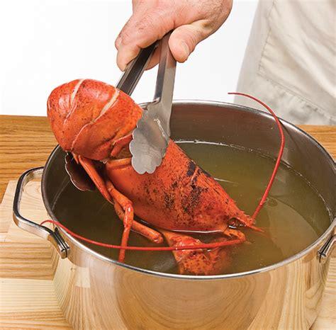 comment cuisiner le homard comment cuire le homards 171 chez larrieu