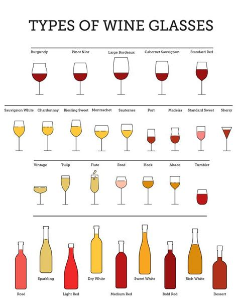 barware glasses types 25 best ideas about types of wine on pinterest wine