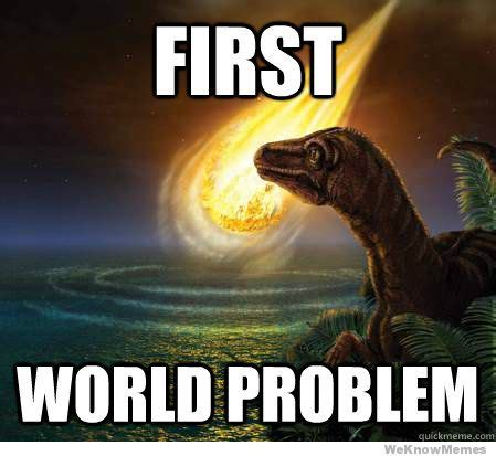 First World Meme - first world problem weknowmemes