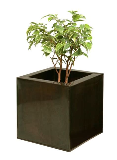 Primrose Garden Planters by Primrose Planters To Feature On The Alan Titchmarsh Show