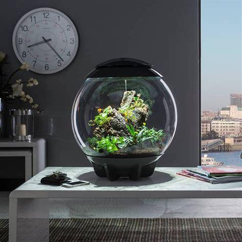 eclairage led terrarium awesome sentinel biorb air l terrarium acrylic tank led