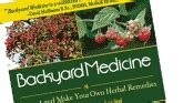 backyard medicine 10 common weeds that can heal you the readyblog