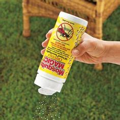 Mosquito Solutions Backyard by Discover And Save Creative Ideas