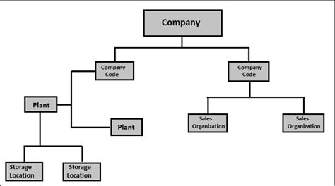 Sales Resume Examples by Sap Pp Organization Structure