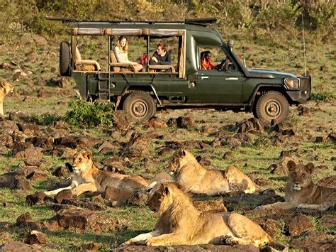 african safari jeep rothschild safaris in africa with kids