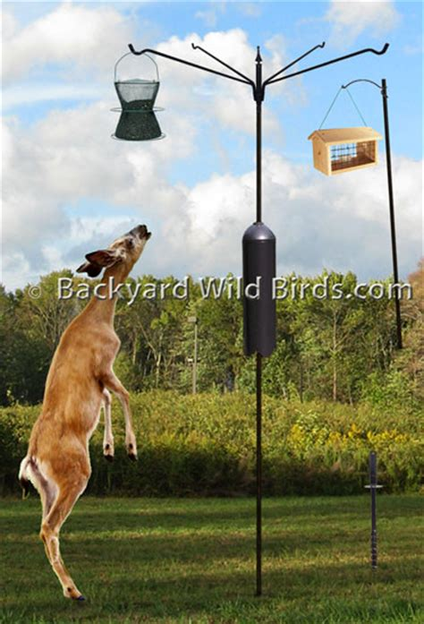 bird feeder pole bird feedersbird feeders