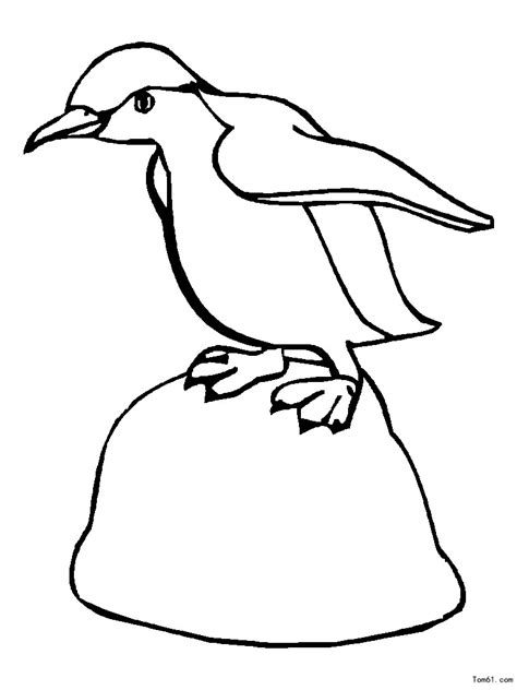 Galerry coloring pages with penguins