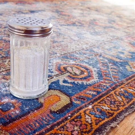 diy rug cleaning 1000 ideas about fresh and clean on popular fresh and oatmeal