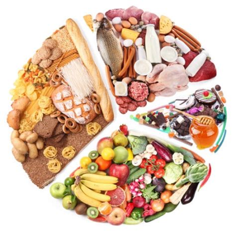 composizione degli alimenti classificazione degli alimenti