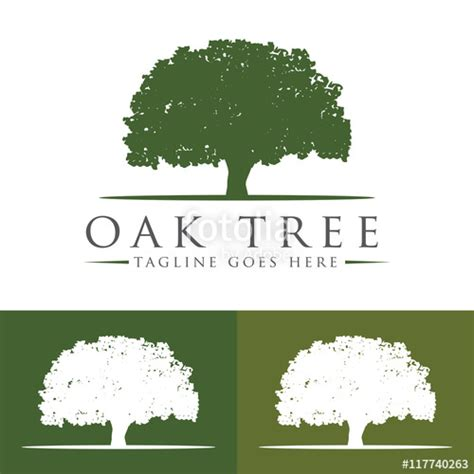 quot oak tree logo design template v 7 quot stock image and