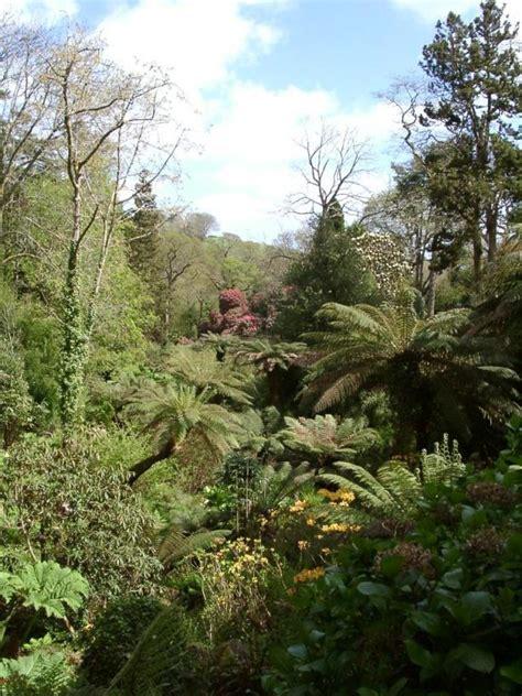 Lost Gardens Of Heligan by Lost Gardens Of Heligan Wikidata