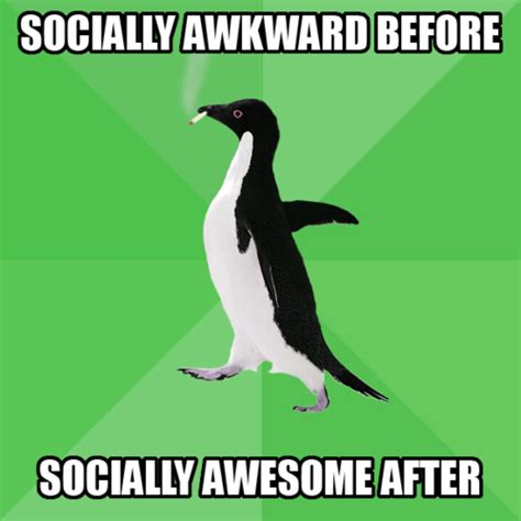 Socially Awkward Penguin Meme - socially awesome awkward penguin memes