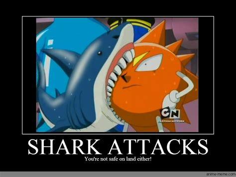 Meme Bobo - shark tattoo memes