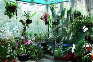 bali orchid garden map