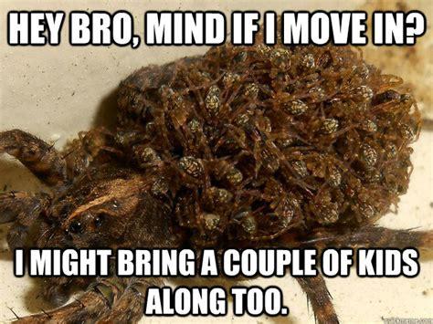 Octopus Nope Meme - octopus nope meme nope memes quickmeme