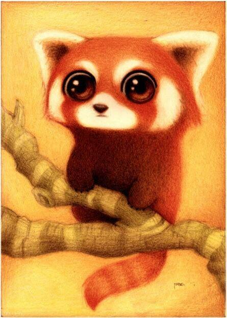 mas de 1000 imagenes sobre pandas en pinterest flor chicas y osos my dream pet a cute red panda drawing cute drawings