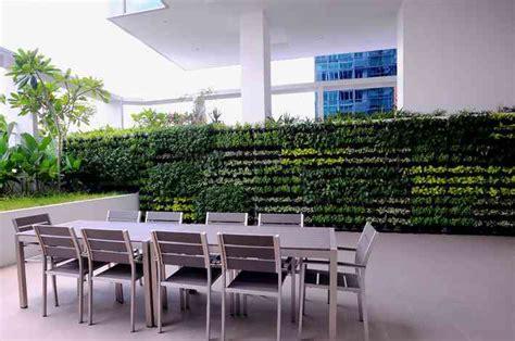 greenwall vertical gardens brisbane coast