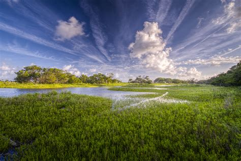 New Work South Carolina Photographer Patrick O Brien South Carolina Landscape