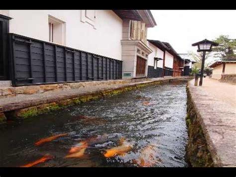 Air 2 Di Jepang ikan koi hidup di selokan got daerah dengan air paling