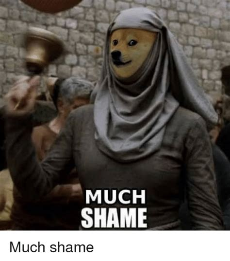 Shame Meme - 25 best memes about doge doge memes