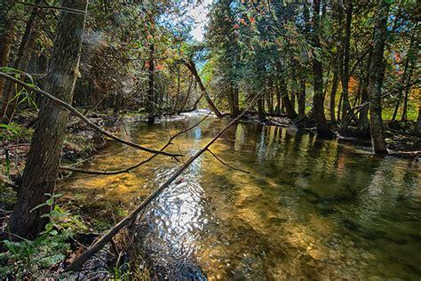 heins creek nature preserve door county land trust