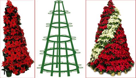 christmas the poinsettia tree fixture