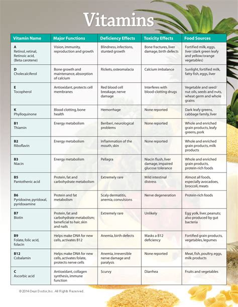 vitamin c vegetables chart 7 best images of printable vitamin and mineral chart