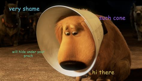 Cone Of Shame Meme - disney doges silly oh my disney
