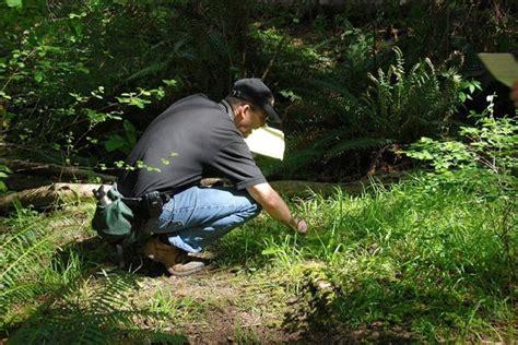 Kent Bioblitz metchosin biodiversity project metchosin bioblitz 2011