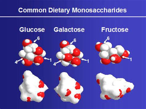 carbohydrates 3d chemistry of carbohydrates in food