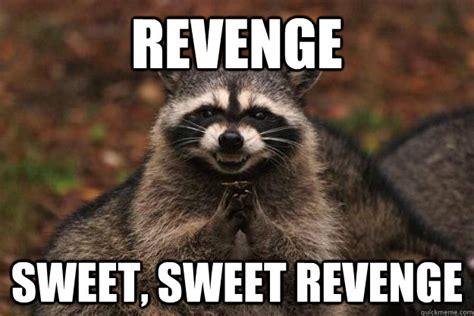 Revenge Memes - revenge sweet sweet revenge evil plotting raccoon