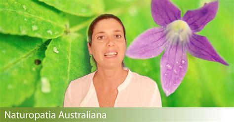 fiori australiani funzionano come funzionano le essenze floreali