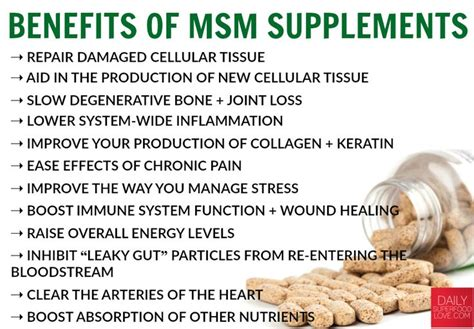 Msm Detox Symptoms by Relieve Improve Joint Health Detox With Msm
