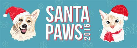 rspca santa paws queensland brisbane