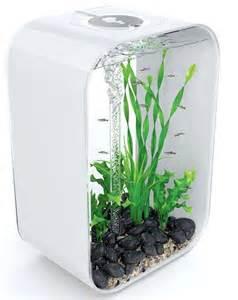 Fashion Fish: BiOrb Brightens Your Home With Hip Aquarium Design