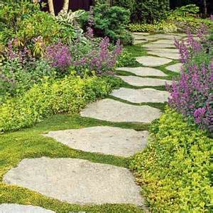 landscaping ground cover ideas 25 best ideas about sedum ground cover on