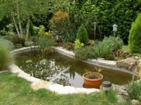 installer un bassin de jardin entretenez et embellissez