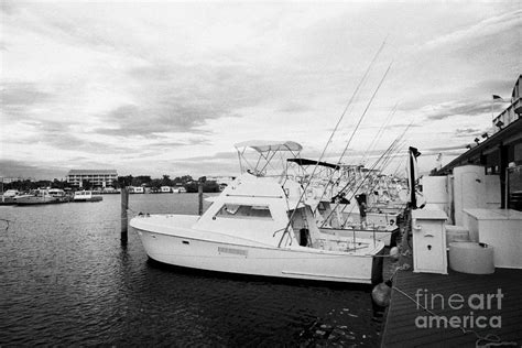 charter fishing boats charter boat row city marina key - Charter Boat Row Key West
