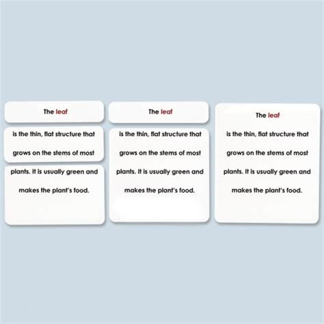 E Gift Card Definition - parts of the leaf definition cards laminated montessori services