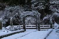 Winter Scene  Image Page