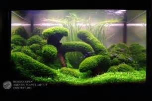 aquarium on aquascaping nano aquarium and