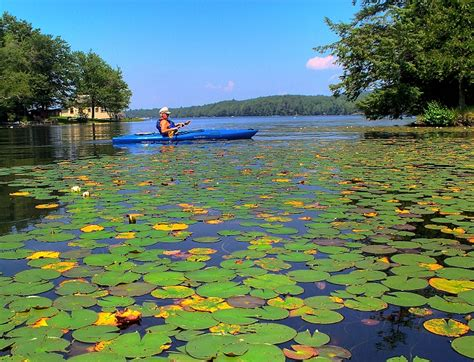 small boat exchange shelburne kayaking vermont starting from rutland county