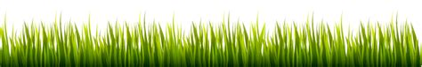 vector grass tutorial how to create a grass banner in adobe illustrator