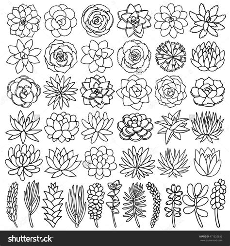 Home Decorating Ideas For Living Room best 25 succulent tattoo ideas on pinterest plant
