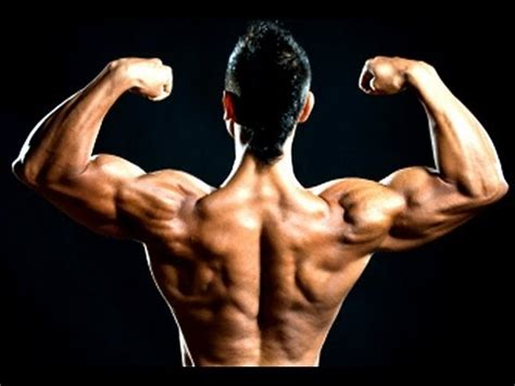the best home bicep workout no equipment needed