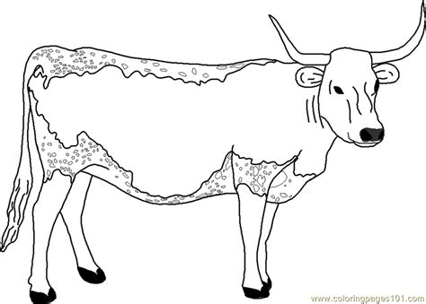 texas longhorn free coloring pages